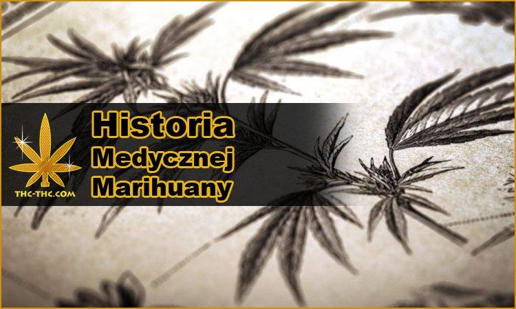 Historia, Medycznej Marihuany, Cannabis, Konopi Indyjskiej