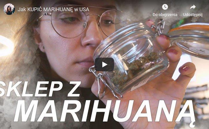 Ameryka, USA, jak kupić, dostać, nabyć, marihuanę, marihuana, cannabis