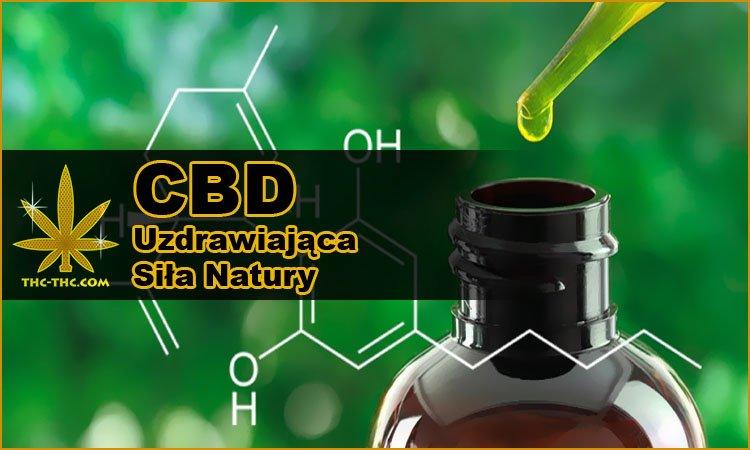 CBD, THC, Olej, Uzdrawiająca, Siła, Natury