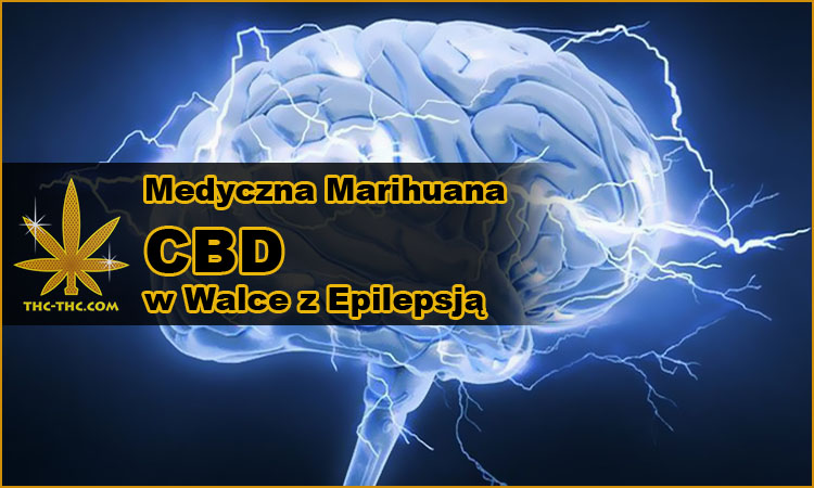 Medyczna Marihuana, CBD, Walce, Epilepsja