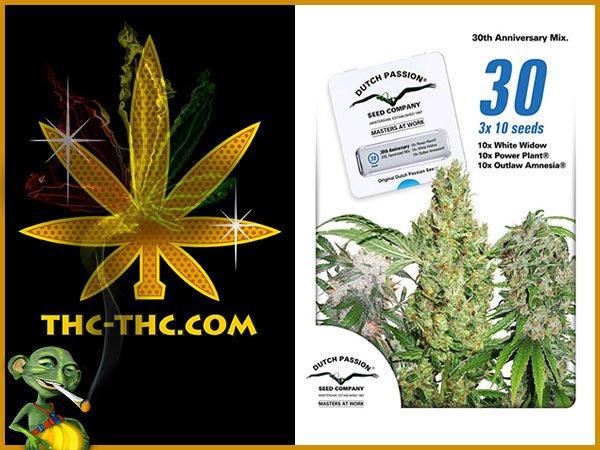nasiona, marihuany, konopi, 30th, anniversary, mix, feminizowane, dutch, passion